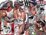 WIB vol.5+vol.6+vol7