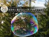 ルミナスタジオによる 創造性と繋がるシャボン玉のエクササイズ