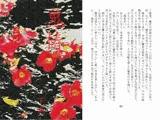 鬼椿(下巻)