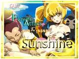 Flower Attack Sunshine