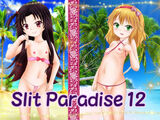 Slit Paradise 12